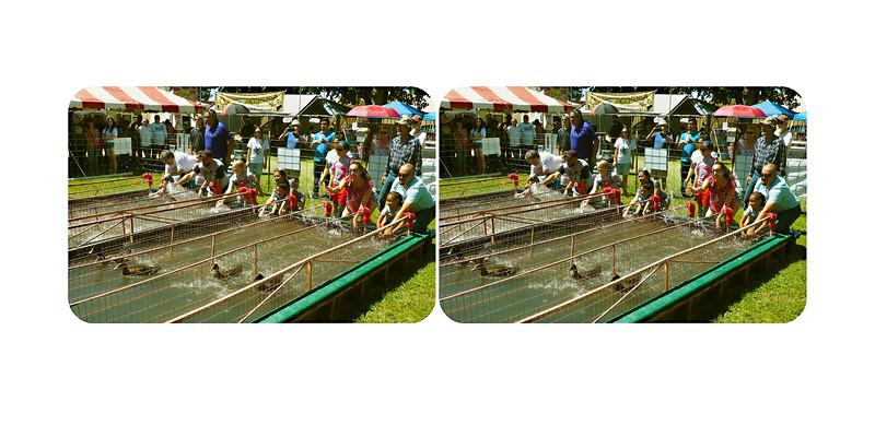 Great American Duck Race, Deming