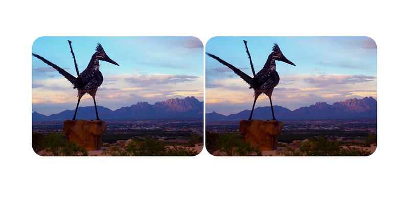 Recycled Roadrunner, Las Cruces