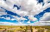 New Mexico - Cyclist on NM 1, Camino Real, south of Bosque del Apache & Socorro - D6-C2-0069 - 72 ppi-X2
