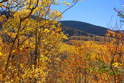 Aspen Vista Hike_101120-004