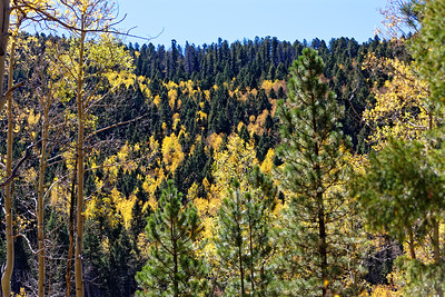 Aspen Vista Hike_101120-018