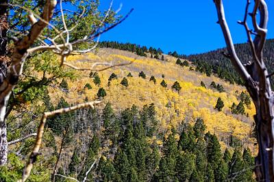 Aspen Vista Hike_101120-022