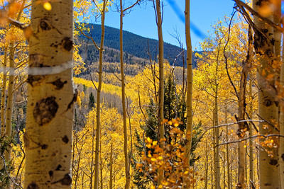 Aspen Vista Hike_101120-012