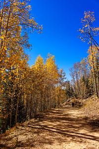 Aspen Vista Hike_101120-005