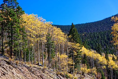 Aspen Vista Hike_101120-019