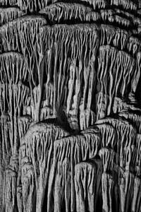 Underground forest - stalagtite pillar detail NPN Weekly Challenge winner 2-13-2010