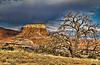 Ghost Ranch Landscape III