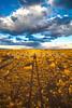 New Mexico - Landscape near Fort Craig Nat'l Historic Site, south of Socorro - D6-C2-0103 - 72 ppi