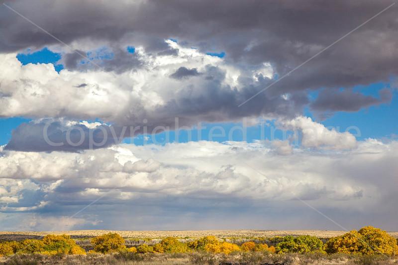 New Mexico - Fort Craig Nat'l Historic Site, south of Socorro - D6-C3-0278 - 72 ppi