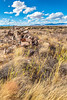 New Mexico - Fort Craig Nat'l Historic Site, south of Socorro - D6-C3-0276 - 72 ppi