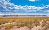 New Mexico - Black Mesa south of Socorro near Fort Craig - D6-C3-0179 - 72 ppi