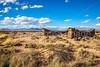New Mexico - Fort Craig Nat'l Historic Site, south of Socorro - D6-C3-0297 - 72 ppi