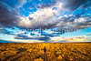 New Mexico - Landscape near Fort Craig Nat'l Historic Site, south of Socorro - D6-C2-0099 - 72 ppi