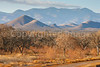 New Mexico - Val Verde Battlefield site south of Socorro - C8a-'08-0258 - 72 ppi