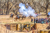 New Mexico - Battle of Valverde reenactment in 2012 - 2-25-12-C1-2 - 72 ppi-2