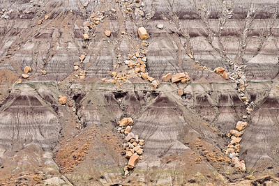 Tertiary outcrop details Angel Peak Recreation Area, New Mexico