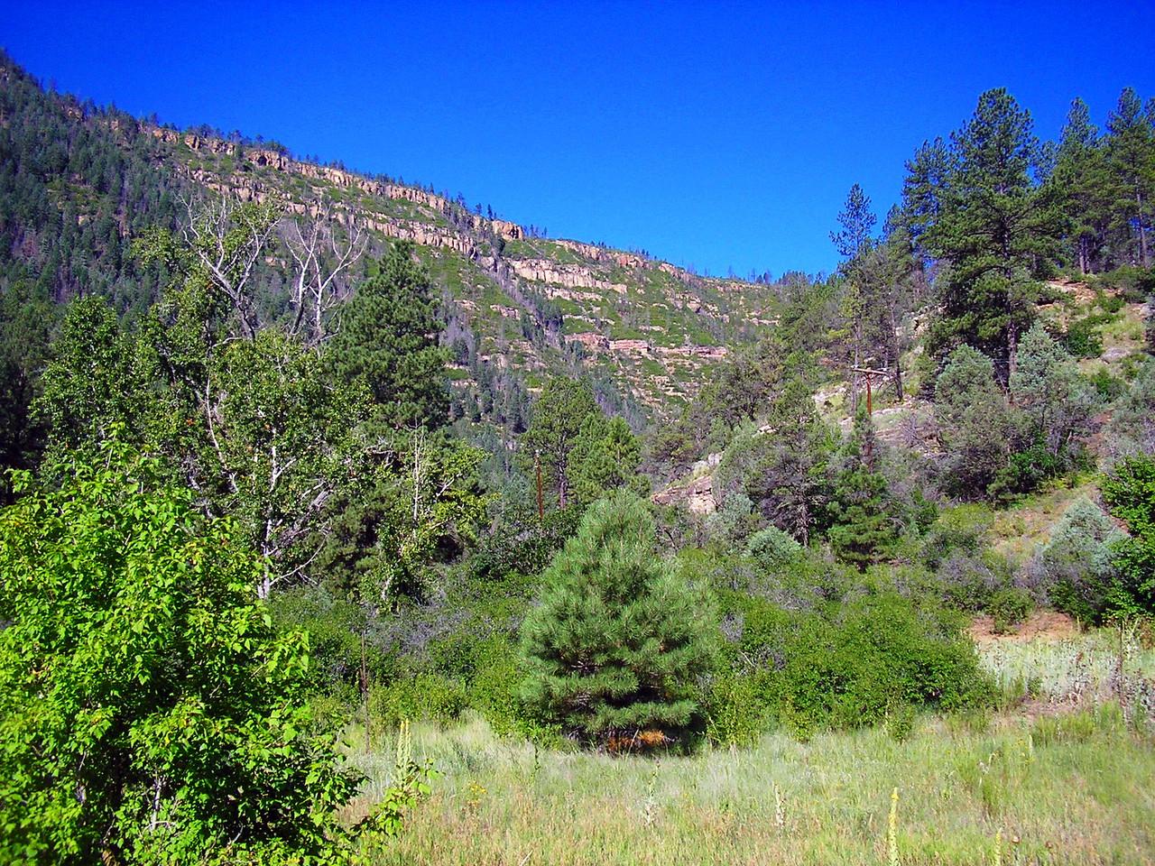 Pecos Canyon Road