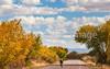 Bosque del Apache Nat'l Wildlife Refuge, New Mexico -0069 - 72 ppi - crop