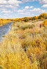 Bosque del Apache Nat'l Wildlife Refuge, New Mexico -0129 - 72 ppi - crop