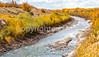 Bosque del Apache Nat'l Wildlife Refuge, New Mexico -0113 - 72 ppi - crop