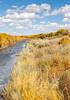 Bosque del Apache Nat'l Wildlife Refuge, New Mexico -0114 - 72 ppi - crop