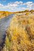Bosque del Apache Nat'l Wildlife Refuge, New Mexico -0114 - 72 ppi