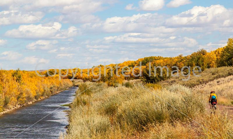 Bosque del Apache Nat'l Wildlife Refuge, New Mexico -0125 - 72 ppi - crop