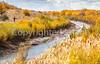 Bosque del Apache Nat'l Wildlife Refuge, New Mexico -0091 - 72 ppi - crop