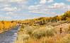 Bosque del Apache Nat'l Wildlife Refuge, New Mexico -0126 - 72 ppi - crop