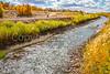 New Mexico - Cyclist in Bosque del Apache Nat'l Wildlife Refuge - D6-C2-0052 - 72 ppi-2