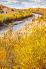 Bosque del Apache Nat'l Wildlife Refuge, New Mexico -0091 - 72 ppi