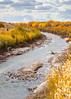 Bosque del Apache Nat'l Wildlife Refuge, New Mexico -0132 - 72 ppi - crop