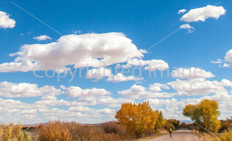 Bosque del Apache Nat'l Wildlife Refuge, New Mexico -0065 - 72 ppi - crop