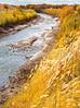 Bosque del Apache Nat'l Wildlife Refuge, New Mexico -0094 - 72 ppi - crop