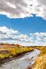 Bosque del Apache Nat'l Wildlife Refuge, New Mexico -0144 - 72 ppi
