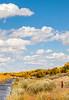 Bosque del Apache Nat'l Wildlife Refuge, New Mexico -0127 - 72 ppi - crop