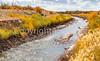Bosque del Apache Nat'l Wildlife Refuge, New Mexico -0144 - 72 ppi - crop-2