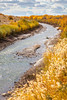 Bosque del Apache Nat'l Wildlife Refuge, New Mexico -0132 - 72 ppi