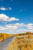 Bosque del Apache Nat'l Wildlife Refuge, New Mexico -0128 - 72 ppi