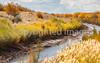 Bosque del Apache Nat'l Wildlife Refuge, New Mexico -0089 - 72 ppi - crop