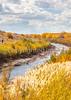 Bosque del Apache Nat'l Wildlife Refuge, New Mexico -0093 - 72 ppi - crop