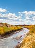 Bosque del Apache Nat'l Wildlife Refuge, New Mexico -0144 - 72 ppi - crop