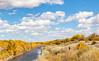Bosque del Apache Nat'l Wildlife Refuge, New Mexico -0117 - 72 ppi - crop