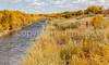 Bosque del Apache Nat'l Wildlife Refuge, New Mexico -0128 - 72 ppi - crop