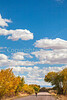 Bosque del Apache Nat'l Wildlife Refuge, New Mexico -0069 - 72 ppi