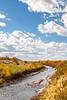 Bosque del Apache Nat'l Wildlife Refuge, New Mexico -0110 - 72 ppi
