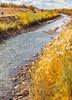 Bosque del Apache Nat'l Wildlife Refuge, New Mexico -0098 - 72 ppi - crop