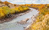 Bosque del Apache Nat'l Wildlife Refuge, New Mexico -0135 - 72 ppi - crop