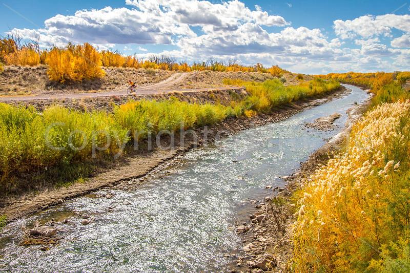 New Mexico - Cyclist in Bosque del Apache Nat'l Wildlife Refuge - D6-C2-0047 - 72 ppi