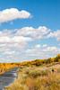 Bosque del Apache Nat'l Wildlife Refuge, New Mexico -0125 - 72 ppi